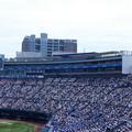 Photos: 190728-高校野球決勝@ハマスタ (19)