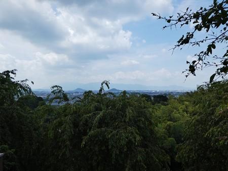 190825-大美和の杜展望台 (1)