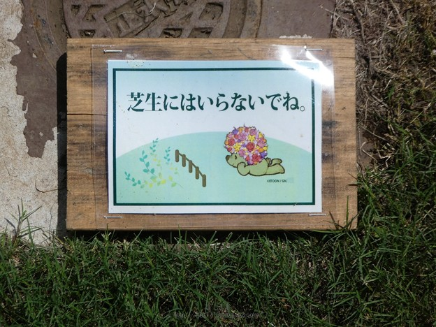 190915-里山ガーデン 大花壇 (8)