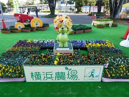 191116-ガーデンベアモニュメント@桜木町駅前 (3)