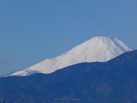 200105-富士山 (1)