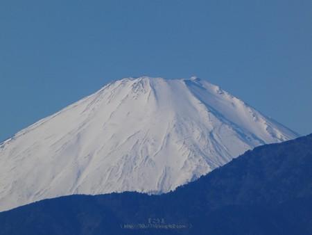 200105-富士山 (2)
