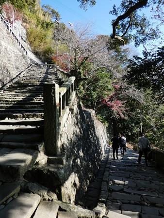 200106-久能山東照宮 石段 (31)