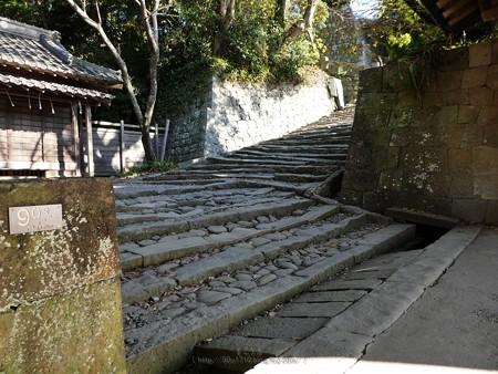 200106-久能山東照宮 石段 (46)