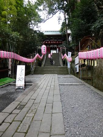 200106-久能山東照宮 石段 (57)