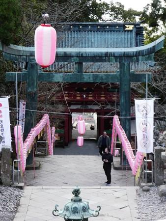 200106-久能山東照宮 (16)