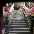 Photos: 200106-久能山東照宮 (45)