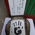 Photos: 200106-久能山東照宮 (69)