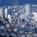 Photos: 200106-日本平夢テラス (7)