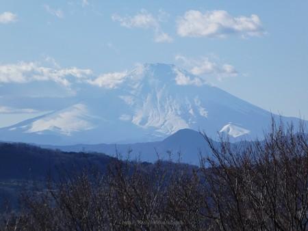 200209-吾妻山公園 (29)