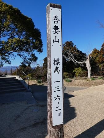 200209-吾妻山公園 (31)