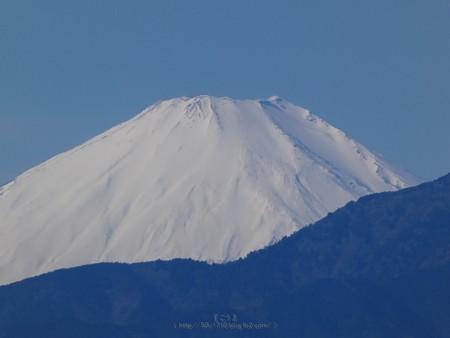 200202-富士山 (2)