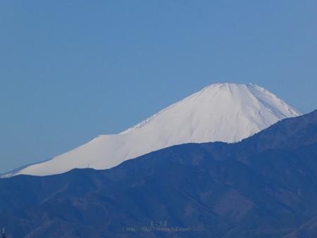 200209-富士山 (2)