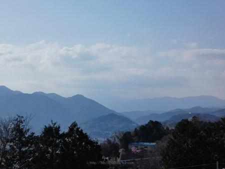 200221-松田山 (43)