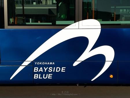 P_20200210_横浜市バス連節バス (3)