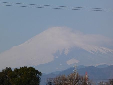 200316-富士山@ゆめが丘 (1)