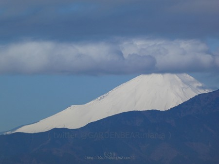 200309-富士山 (2)