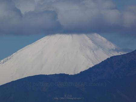 200309-富士山 (4)