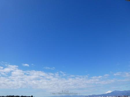 200312-富士山 (1)