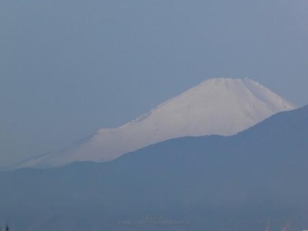 200313-富士山 (1)