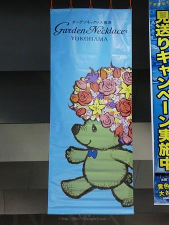 200326-ガーデンベアフォトスポット@大桟橋 (20)