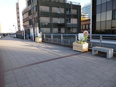 200326-開港の道 (1)