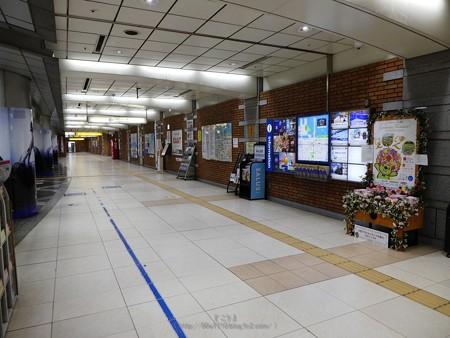 200328-花の香りガイドブックスタンド @日本大通り駅 (1)