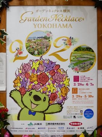 200328-花の香りガイドブックスタンド @日本大通り駅 (3)