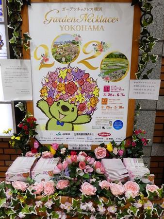 200328-花の香りガイドブックスタンド @日本大通り駅 (4)