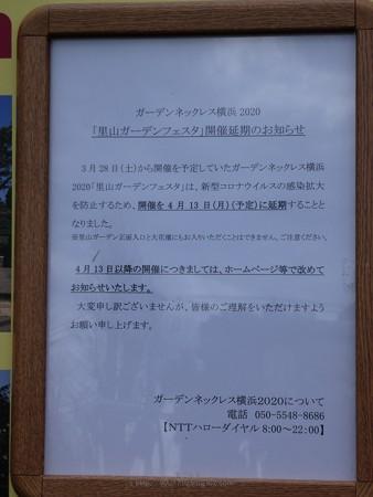 200328-インフォメーションボード@桜木町駅前 (5)