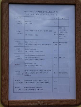 200328-インフォメーションボード@桜木町駅前 (6)