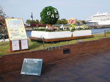 200403-ガーデンベアフォトスポット@象の鼻 (32)