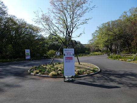 200406-里山ガーデン (1)