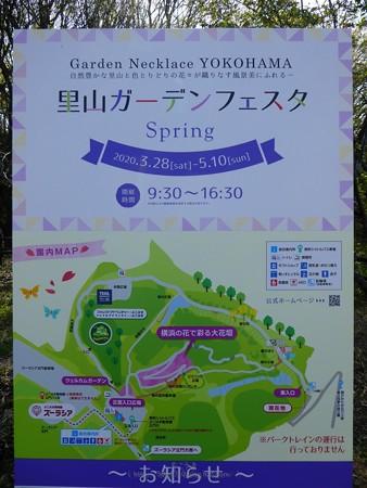 200406-里山ガーデン (7)