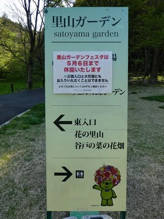 200406-里山ガーデン (31)