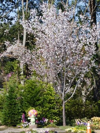 200406-里山ガーデン (77)