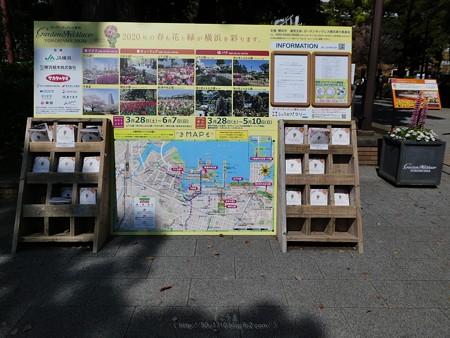 200406-横浜公園 (7)