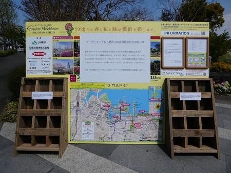 200411-新港中央公園 (1)