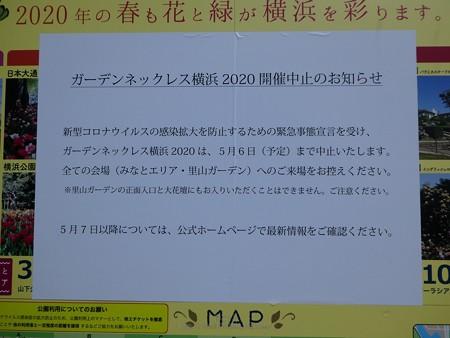 200411-新港中央公園 (2)