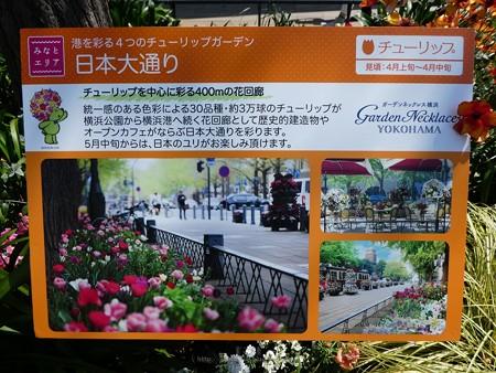 200404-横浜公園・日本大通り (7)