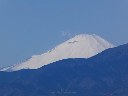200320-富士山 (2)