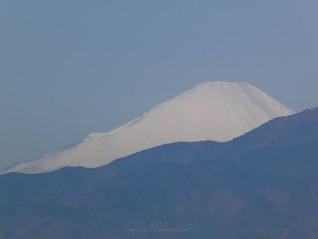 200326-富士山 (2)