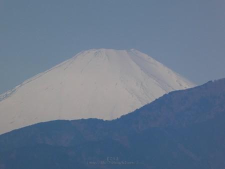 200326-富士山 (3)