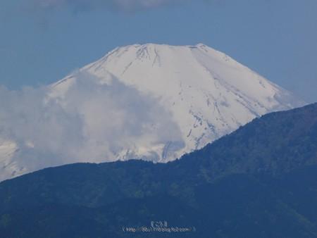 200507-富士山 (3)