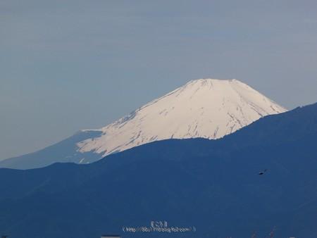 200508-富士山(4)