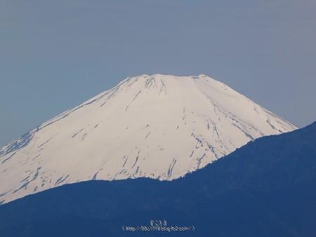 200508-富士山(5)