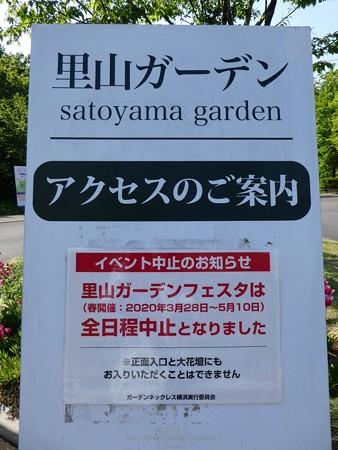200429-里山ガーデン (2)