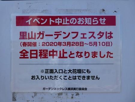 200429-里山ガーデン (3)