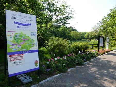 200429-里山ガーデン (5)