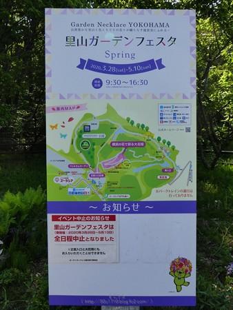 200429-里山ガーデン (6)